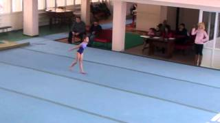 Спортивная Гимнастика Армениа