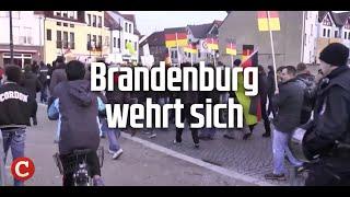 Asylflut: Brandenburg wehrt sich
