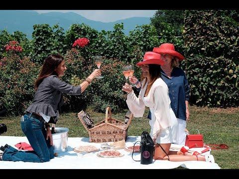 Wine Passport | Episode 3 | The sparkling challenge