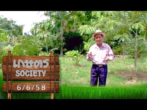 """เกษตร Society 7/6/58 : """"การจัดสวน"""" ให้เหมาะกับที่อยู่อาศัย"""