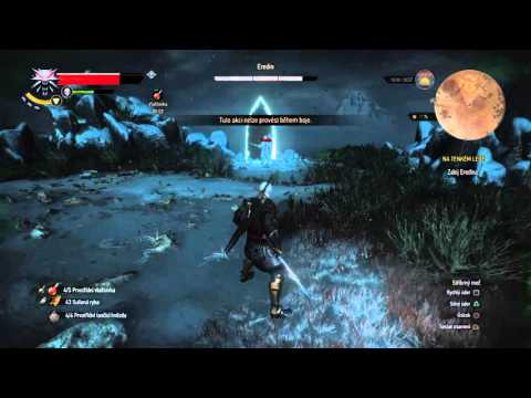 Witcher  New Game Plus Death March Build
