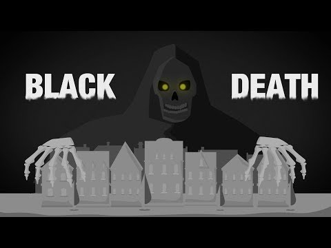 The Black Death - Black Rat and Flea