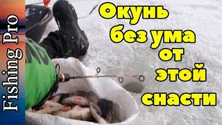 Зимняя рыбалка. Уроки ловли окуня на снасть топорик от профи
