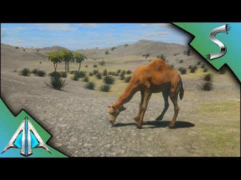 TRAVELLING TO THE DESERT! CAMEL TAMING AND CRAZY AXE WIELDING ENEMIES! - Animallica [Gameplay E6]