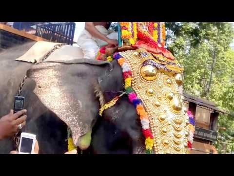 Swamiye Saranam Ayyappa | Sabarimala...