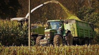 Kukurydza na kiszonkę-Usługi Rolnicze Ryszard Rzendkowski
