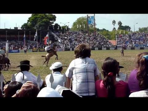 Uruguay: les gauchos, vedettes de la Fête de la Patrie
