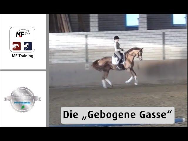 Die Gebogene Gasse | Bubblebash | S Dressur Pferd | MF-Training die Reitsport-App