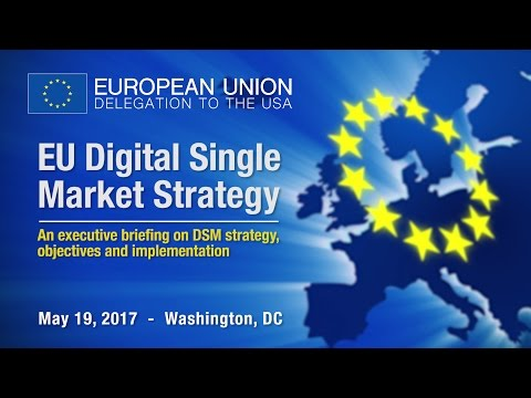 EU Digital Single Market Strategy Executive Briefing