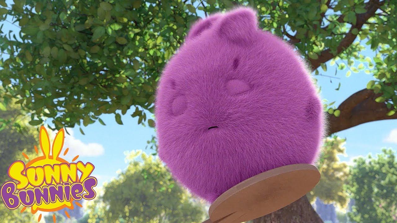 Download SUNNY BUNNIES - Stay Awake Big Boo   Season 3   Cartoons for Children