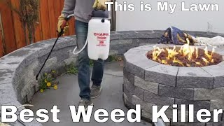 DIY How To Kill weeds using a selective herbicide.  This is my lawn, speedzone by pbi gordon