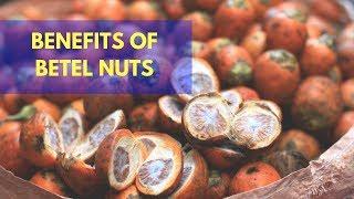 AMAZING BENEFITS OF BETEL NUTS