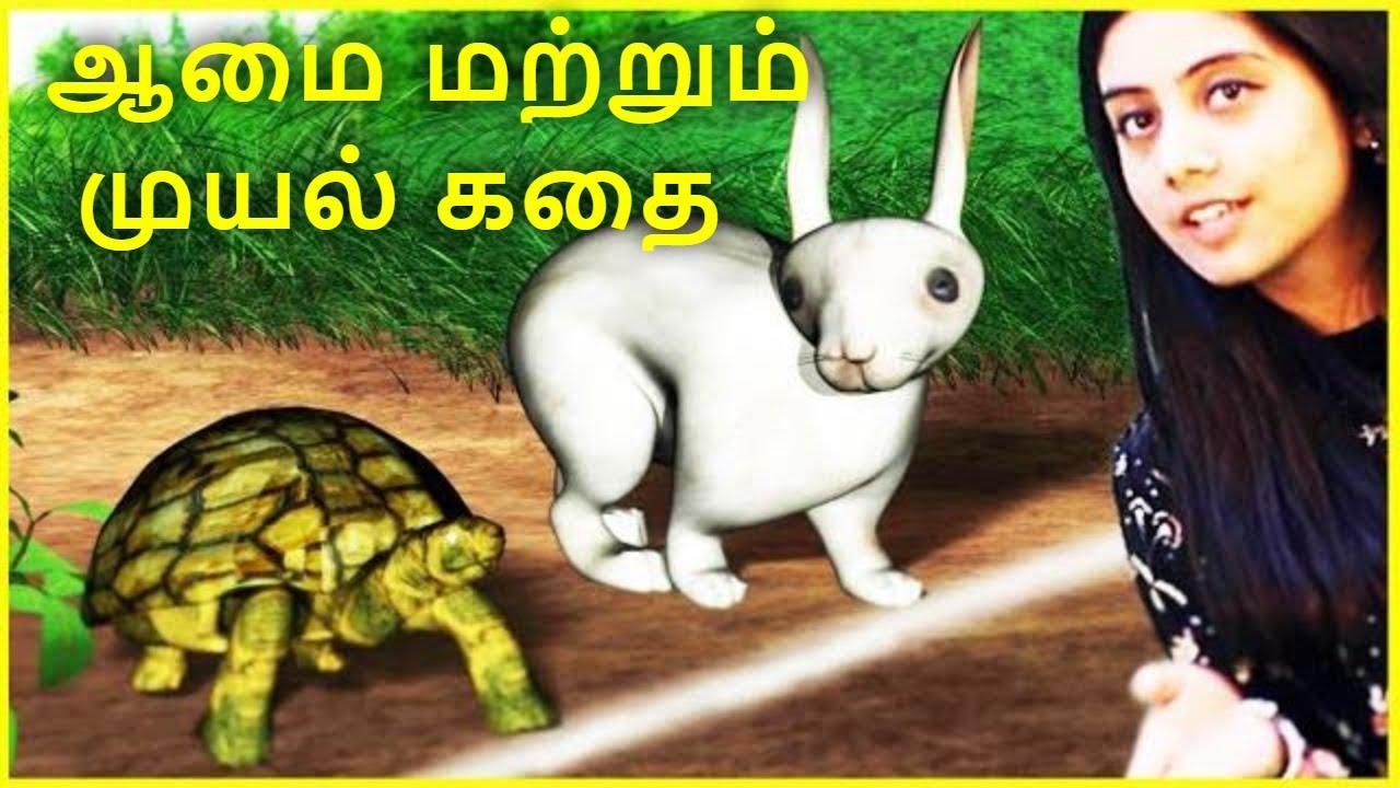 ஆமை மற்றும் முயல் கதை l Rabbit and Tortoise story in Tamil l Moral Stories in Tamil l Tamil Fairy