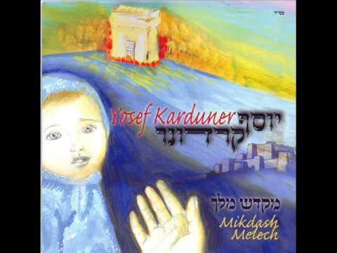 יוסף קרדונר - מקדש מלך