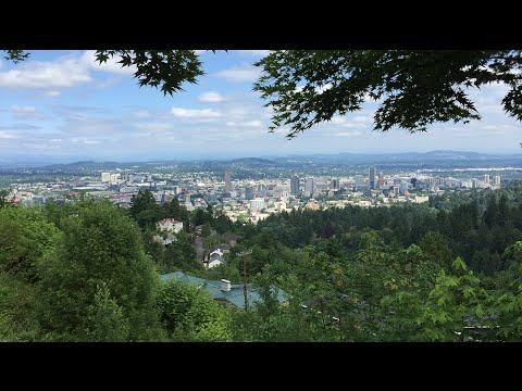 Portland Air Toxics: sampling results
