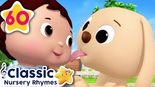 Cute Animals Song!   +More Baby Songs   Baby Learning   Little Baby Bum