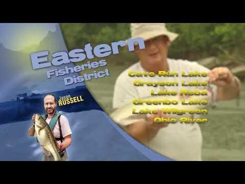 Fishing Report - May 15th, 2020