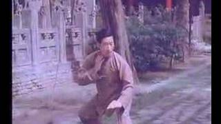 Chen Taiji (Chen Xiaowang)