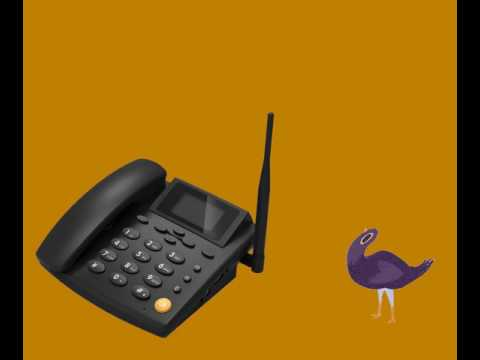 Headbanging bird uses the Electronic Dance Music Generator