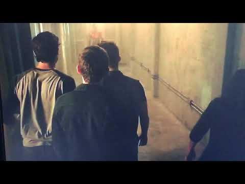 Teen Wolf Hellhound Vs Theos Pack
