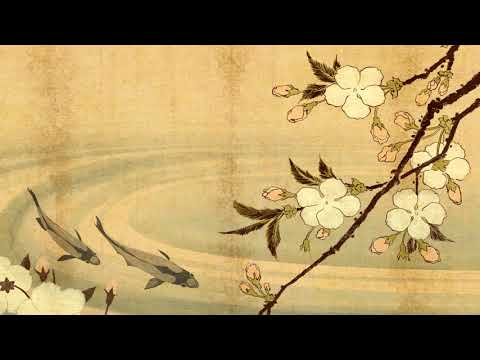 Traditional Japanese Music | Koi Pond | Shamisen, Koto & Taiko Music