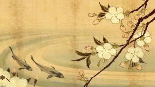 Traditional Japanese Music | Koi Pond | Shamisen, Koto & Taiko…