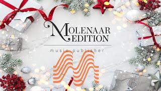 Besinnliche Weihnachtszeit - Traditional/Franz Watz