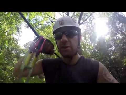 Treetop Trekking Brampton June 2016