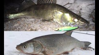 Рыбалка на СПИННИНГ в Марте Ловля ЖЕРЕХА на колебло Ловля СУДАКА на ВОБЛЕРЫ ночью