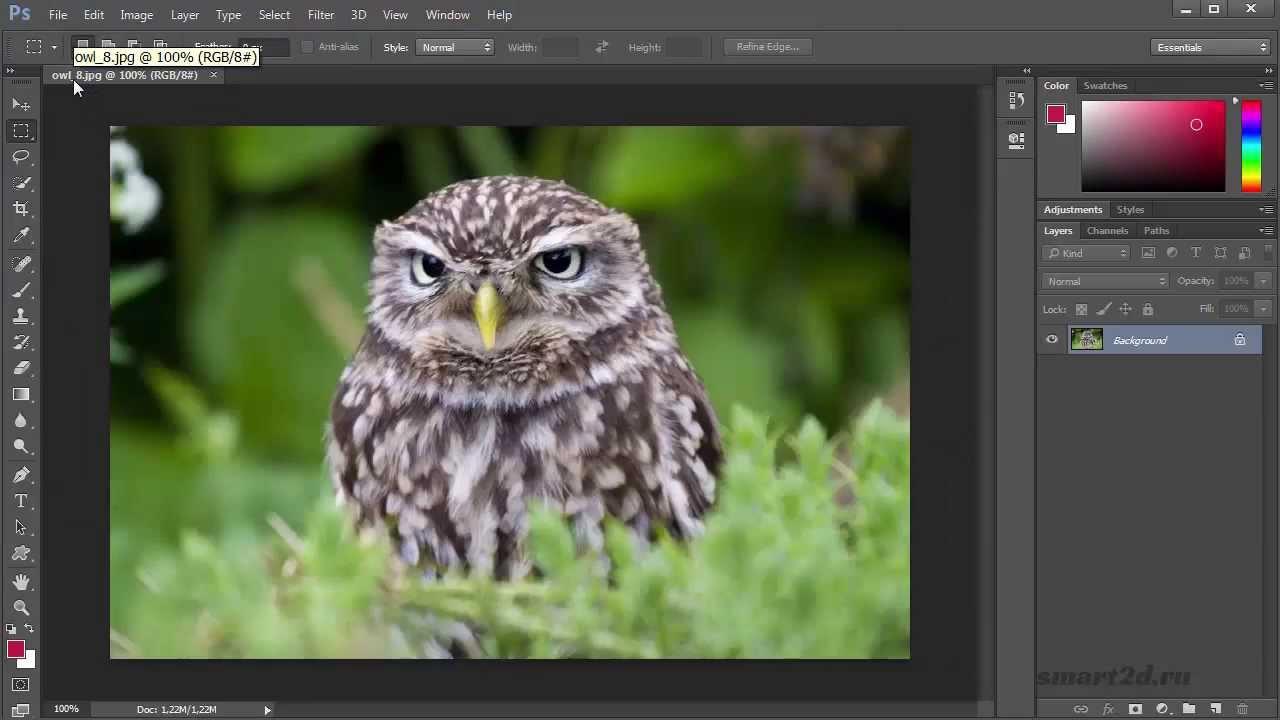 Уроки Фотошопа для начинающих бесплатно с нуля. Как работать в Фотошопе. #7