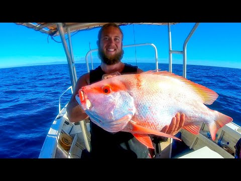RED EMPEROR, HUGE SADDLETAIL,COBIA Fishing Wide Off Broome!
