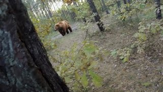Bear Attack, Man is trying to run away from attacking Bear: GoPro thumbnail