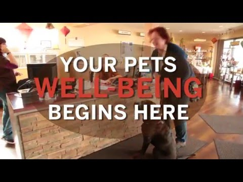 Holistic Pet Vet - Dr Gary Richter