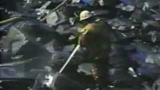 Effects of Benzene: Exon Valdez clean up