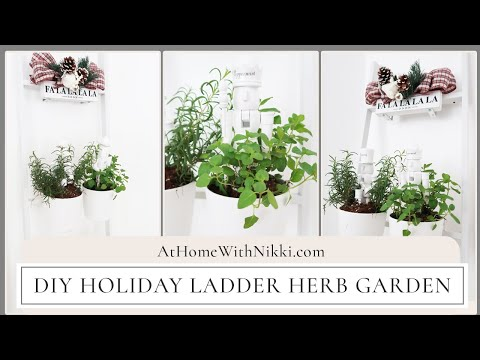 DIY Holiday Ladder Herb Garden