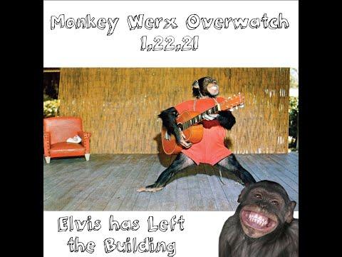 Monkey Werx Overwatch SITREP 1 22 21