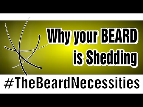 Why Your Beard Is Shedding   #TheBeardnecessities   Ep 13