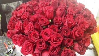 101 роза. Купить 101 розу. Букет 101 роза(, 2015-08-21T10:43:56.000Z)