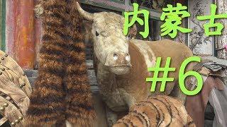 ዦ 10 ዣ Монгольский кумыс. Прогулки по рынку. Ч1