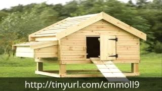 Building A Chicken Coop - Plans And Designs