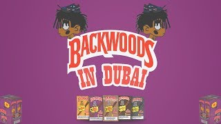 [FREE] 'Backwoods In Dubai' - Playboi Carti Type Beat