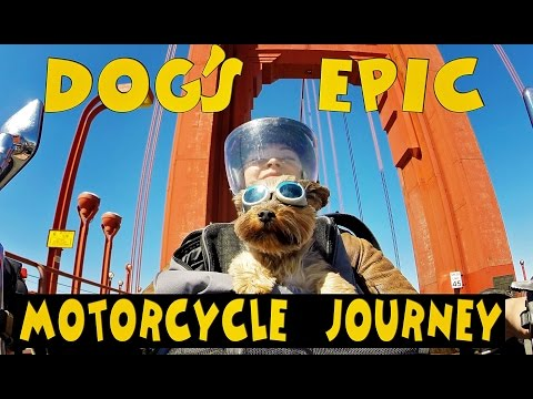 Canada to California- Solo female and her dog's Epic motorcycle journey