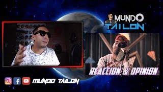 Millones - Arcangel X Jay Menez X El Alfa X Jon Z X Bryant Myers X Mozart La Para - Reaccion