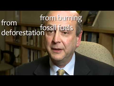 Ask The Scientist 04 Union of Concerned Scientists Human Fingerprints