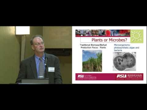 Using Photosynthetic Microorganisms to Generate Renewable Energy Feedstock - Bruce Rittmann