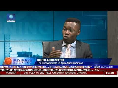Analyst Advocates More Investment In Agric Sector Pt.1 |Business Morning|