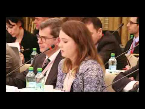 ERGP Workshop - 19 November 2014, Bucharest (part 1)