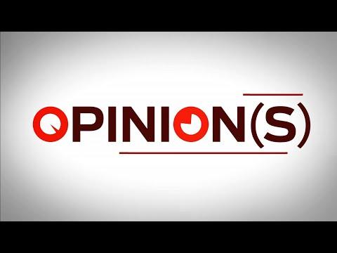 Opinions - Dominique David et Stéphane Delpeyrat