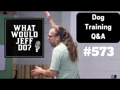 dog-training---training-nervous-dogs---stop-dog-marking---what-would-jeff-do?-q&a-ep.573-(2019)