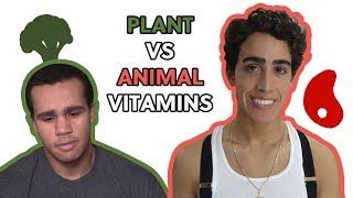 VEGANS CAN'T ABSORB VITAMINS: Plant VS Animal Nutrition